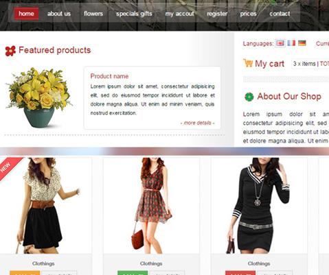 E commerce websites in UAE   Best e commerce websites developer in UAE